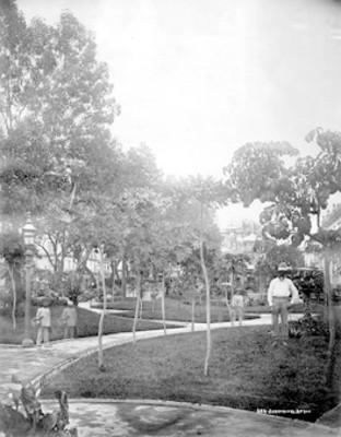 """""""Jardín y el Atrio"""", de la Catedral Metropolitana, ciudad de México"""