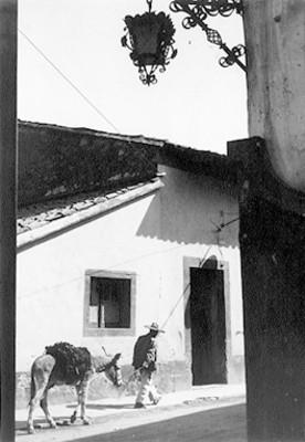 Hombre camina por la calle y tira de un burro