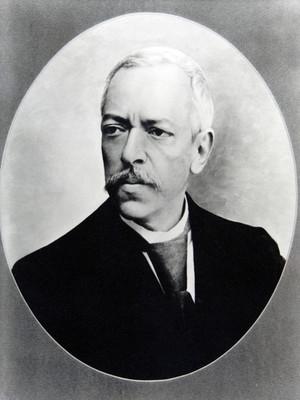 Francisco del Paso y Troncoso, retrato