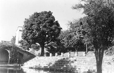 Jardín Borda, lago y escaleras, vista parcial