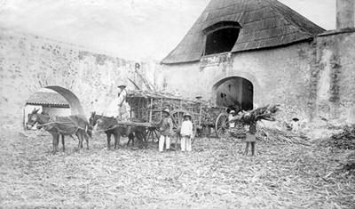 """Ingenio de Cuatla; """"Sugar mill. Cuautla"""""""