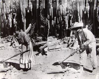 Adolescentes campesinos cortan leña