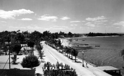 """Bahía de """"La Paz"""", vista panorámica"""