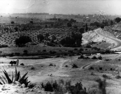 Magueyal, paisaje