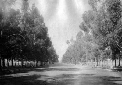Paseo de la Reforma México, panorámica