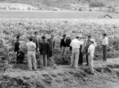 Funcionarios de la Secretaría de Agricultura recorriendo un campo de cultivo de maíz