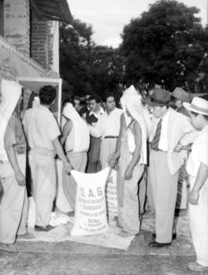 Funcionarios observando a trabajadores guardando semillas de trigo