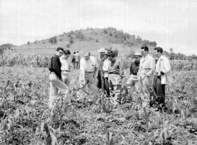 Agricultor con funcionarios en un campo de cultivo de maíz
