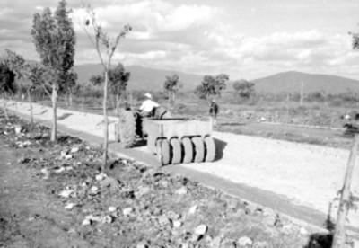 Trabajador con tractor aplanando un camino en el fraccionamiento Pedregal de las fuentes