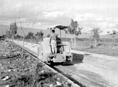 Trabajador aplanando un camino con un tractor en el fraccionamiento Pedregal de las fuentes