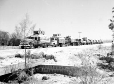 Camiones de carga en un camino, durante un embarque de trigo
