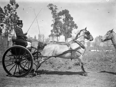 Hombre conduciendo un carruaje