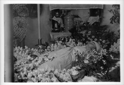 Cádaver de un niño rodeado de flores