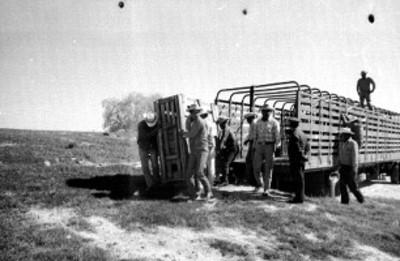Hombres bajan jaula de un camión en el Africam Safari