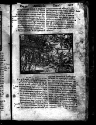 """Pasaje del """"APOCALYPSIS"""" en la biblia Sacra"""
