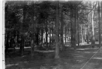 Instalaciones pertenecientes a la fábrica San Rafael en medio del bosque, vista parcial