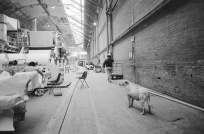 Trabajadores en la fábrica de papel San Rafael, interior