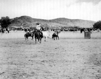 Hombres vestidos de charros montan a caballo dentro de rodeo