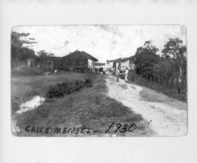 """""""Calle Mendez"""", vista parcial"""