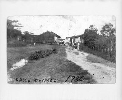 """Calle Lerdo"", vista parcial"
