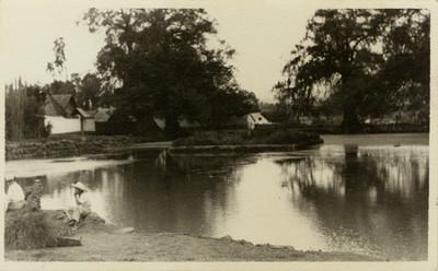 Vista de niños junto a un lago