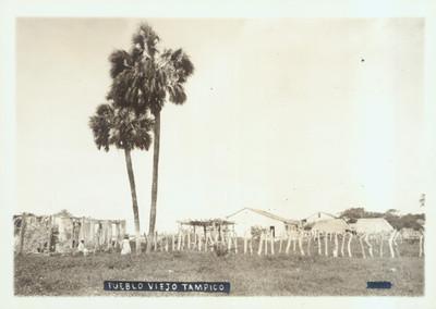 Pueblo viejo Tampico