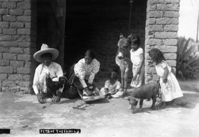 """Pets of the family"" campesina mascotas y familia campesina"