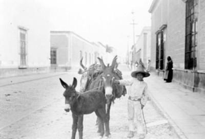 Niño campesino con asnos por una calle
