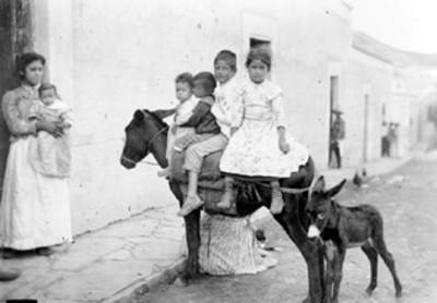 Niños y niñas montados en un asno con cría