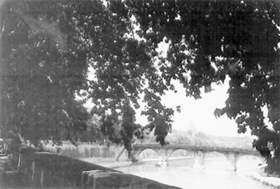 Puente del río Tiber