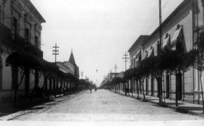 "Vista de casas ubicadas en la ""Avenida Juárez de Toluca"""
