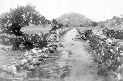711. Pirámide de la Luna y camino de los muertos, Teotihuacan[sic.]