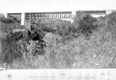 """""""N°.71. Puente de Paso del Macho"""" de """"Ferrocarril Mexicano"""""""
