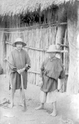 104. Niños indígenas, relato