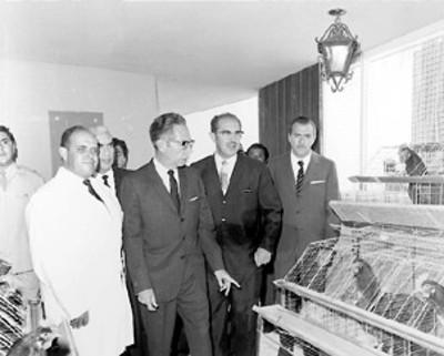 El presidente Gustavo Díaz Ordaz visita una granja avícola