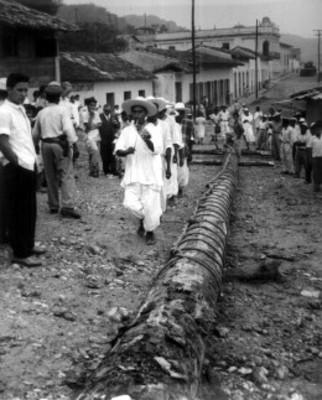 Indios totonacos realizan danza alrededor de tronco