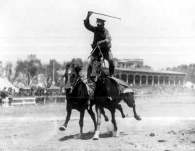 Militar de pie sobre dos caballos durante una exhibición