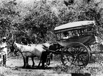 Hombre conduuce carreta por vereda