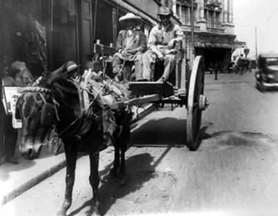 Hombres abordo de carreta circulan por una avenida