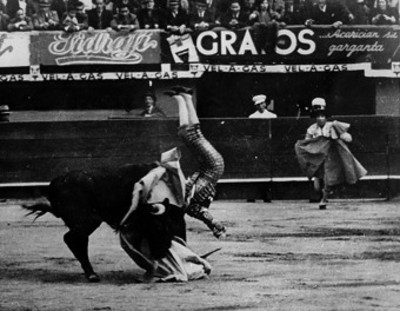Torero es embestido por toro durante corrida