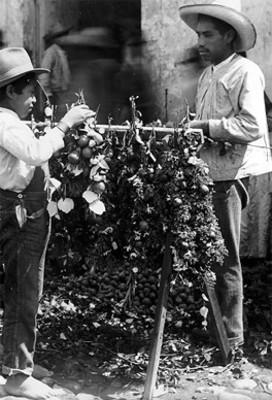 """Hombre y niño realizan ramos de flores en el """"Día de San Juan"""""""