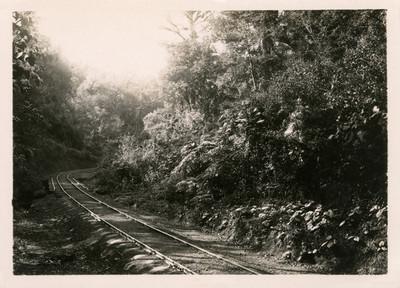 Vista del tendido de vías férreas en una barranca, reprografía