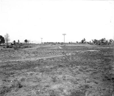 Campos de cultivo, vista general
