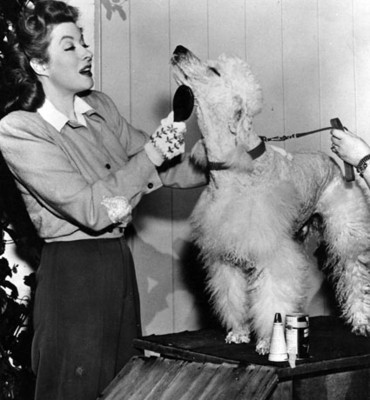 Mujer cepilla perro