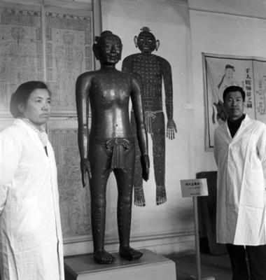 Médicos en consultorio de medicina tradicional china, retrato