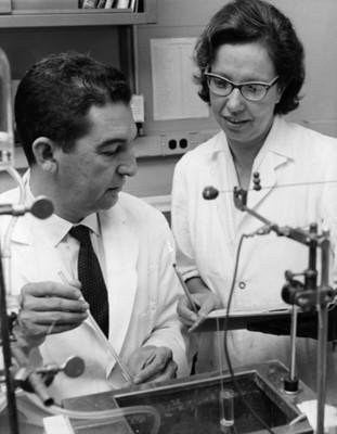 Hombre junto a mujer realiza experimento en laboratorio