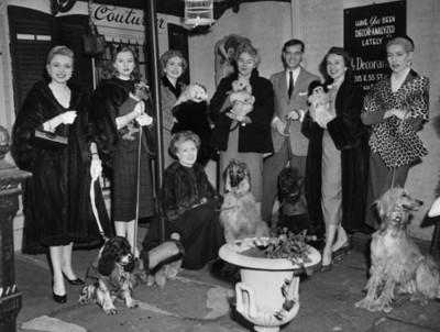 Mujeres junto a sus perros, retrato de grupo