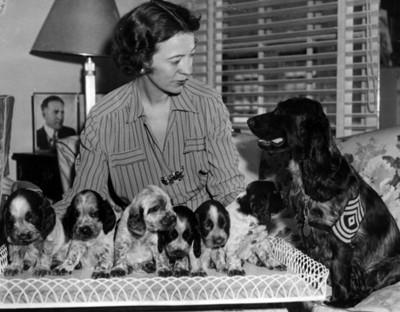 Mujer junto a perros, retrato