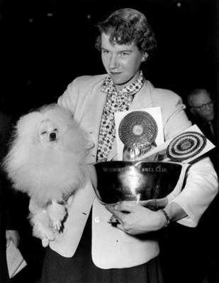 Mujer muestra trofeos durante concurso de perros