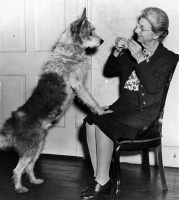 Anciana con perro, retrato